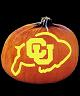 COLORADO BUFFALOES PUMPKIN CARVING PATTERN
